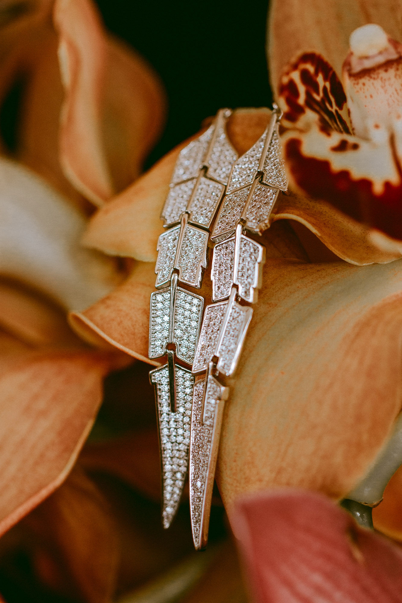 Exotic Jewelry Photography
