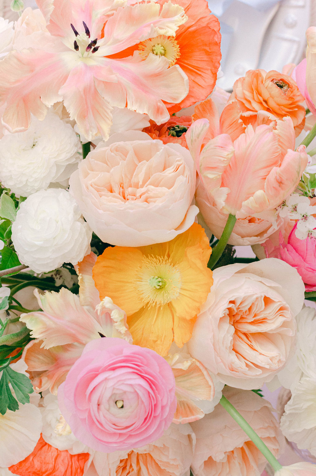 Beautiful Floral Photography